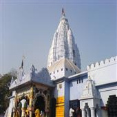 The Independence:CM-will-take-necessary-action-for-development-of-Samaleswari-temple-and-Hirakud-will-be-developed-as-international-tourism-center